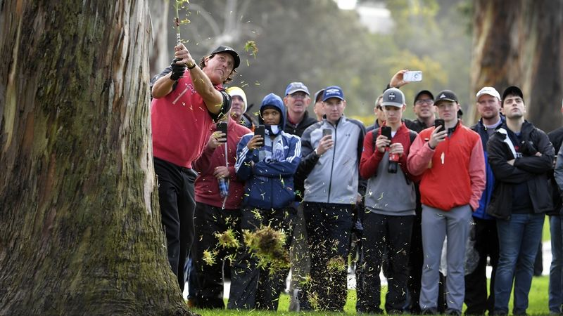 Mickelson Lob Over Tree