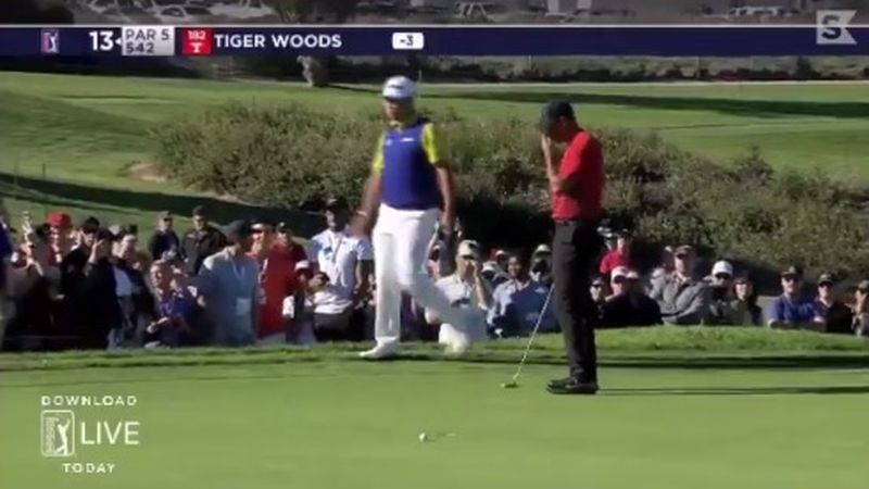 Tiger Woods Yell