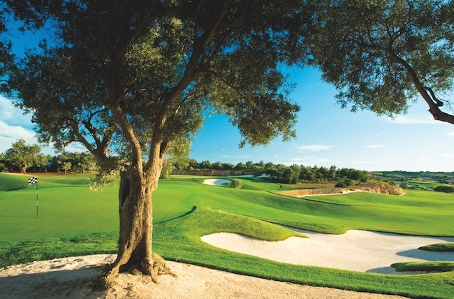 Faldo course amendoeira