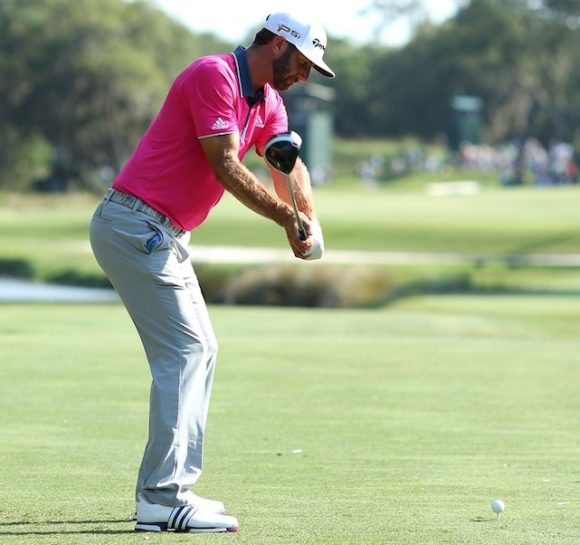 Dustin Johnson41